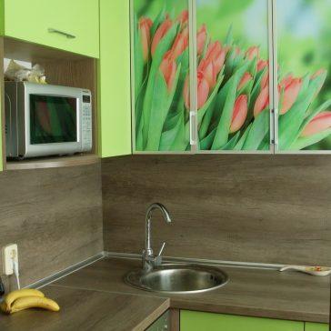 Нежная кухня из австрийских материалов от фирмы Egger. Изюминкой кухни служат фасады с изображением тюльпанов