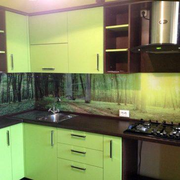 Классическое сочетание светло-зеленого оттенка с насыщенным коричневым цветом. Дополняет образ теплой и уютной кухни фотопечать на закалённом стекле с лесным пейзажем